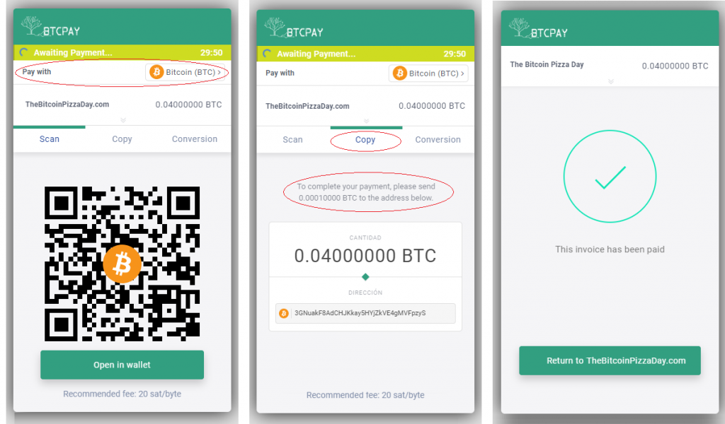 btcpay server bitcoin pizza day